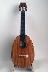 pineapple concert ukulele