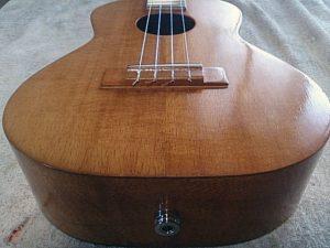 カマカへAG-ukuleleをインストール