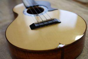 スプルースコアのF's ukeコンサート